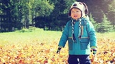 novembro : Happy Little Boy Smiling in Autumn Park at Sunny Day. Kid Outdoors in Fall. Warm Colors Toned Video. Stock Footage