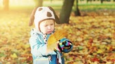 Little Boy Playing with Leaf in Autumn Park at Sunny Day. Kid Outdoors in Fall. Evening Sunlight. Warm Colors Toned Candid Video. Stock Footage