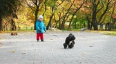 Little Boy Walking with Dog in Autumn Park at Sunny Day. Kid with Pet Outdoors in Fall. Evening Sunlight. Candid Handheld Video.