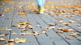 Womans Legs Walking Away. Street Style Girl in Sneakers and Jeans. Modern Female Fashion in Fall. Autumn Background. Yellow Leaves on Street Pavement. Shallow Depth of Field. Loneliness Concept. Stock Footage