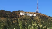 кинозвезды : View of the Hollywood sign in Los Angeles with plant life in the foreground blowing in the wind.