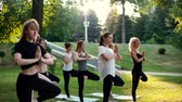 om : Group of young women is practicing yoga pose tree morning in park while sunrise. Group of people in sportswear is standing yoga tree pose. Tracking shot in slow motion