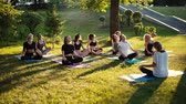 meditating : Group of women is stretching necks in park on summer sunny morning under guidance of coach in slow motion. Group of people outdoors is sitting on yoga mat in lotus pose on grass with their eyes closed Stock Footage