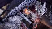 Brazier from barrel of firewood. Shot in slow motion. Close-up of bbq fireplace outdoors. Burning wood and coals. Archivo de Video