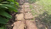 pave : Walks in the garden path among enjoy nature and outdoors on summer day Stock Footage