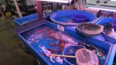fishmarket : Bangkok, Thailand - March 11, 2017 : Fishmarket at Chatuchak Weekend Market in Bangkok, Thailand. Is one of the worlds largest markets covering over 35 acres with 15,000 stalls
