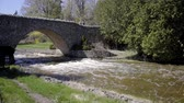pontes : bridge above river in ontario canada nature spring serene