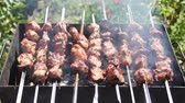 heat : shashlik roasting in grill on nature hot summer day