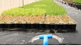 bom : Water system in Hydroponic farm