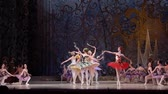 elegance : DNIPRO, UKRAINE - JUNE 3, 2017: Classical ballet Sleeping beauty performed by members of the Dnipro Opera and Ballet Theater.