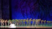ás : DNIPRO, UKRAINE - JANUARY 8, 2018: Unidentified girls, ages 7-12 years old, perform Ballet pearls show at State Opera and Ballet Theater. Stock Footage