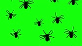 aranha : Spiders running up on a green screen. Seamless loop 3d animation of black silhouettes of arthropods on chroma key. Stock Footage