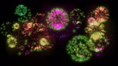 ignite : 4K big beatiful firework at holiday night. 3d animation with different versions fireckrackers. version 5