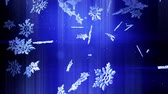 csillog : shining 3d snowflakes float in air in slow motion and shine at night on a blue background. Use as animated Christmas, New Year card with large snowflakes, lens flare, bokeh. Snowflake V10
