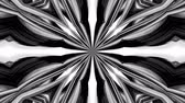 geometrical shapes : 4k loop animation with black and white ribbons are twisted and form complex structures like symmetric ornament pattern or kaleidoscopic effect. Seamless footage with luma matte as alpha channel. 32 Stock Footage