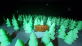 クリスマスタイム : Beautiful Christmas background for new year with golden text 2020. 3d render background night coniferous forest in cartoon style like toys. Many Christmas trees in the night are highlighted.