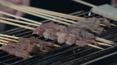 fogueira : Close-up of frying pieces of meat in the grill on wooden sticks. Asian cuisine.