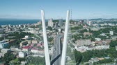 pilon : Aerial drone view of The Zolotoy Golden Bridge. Cable-stayed bridge across the Zolotoy Rog (Golden Horn) in Vladivostok, Russia Stok Video