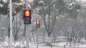 red traffic light : A traffic light for pedestrian in the snow. Urban winter landscape. Pedestrian traffic lights working during heavy snowfall.