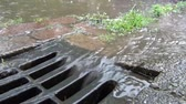 storm drain : Water is flowing into a drain after heavy rainfall in the summer