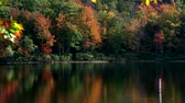 blur : Video of tree leaves turning into fall foliage hues with reflection upon the water at Norton Pond in Lincolnville, Maine. Stock Footage