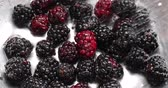 Video of ripe blackberries being rinsed with water in a stainless steel colander.