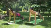 rabo de cavalo : Sporty fit women with ponytails practicing yoga on fitness mats, standing in plank exercise in summer park. Beautiful females in sportswear working out core muscles, doing plank exercise in nature. Stock Footage