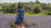 Stunning cheerful long hair brunette woman in stylish blue dress enjoying outdoor leisure while walking in purple lavender field. Beautiful young female relaxing on summer vacations in countryside. Stockvideo
