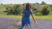 Elegant woman in trendy blue dress running her hand gently over fragrant lavender blossoms during walk on summer day. Joyful charming female softly touching lavender shrubs while walking in nature. Stockvideo