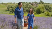 Carefree happy mixed race couple in love with picnic basket walking through lavender field during summer vacations in countryside. Positive multinational people enjoying romantic date in nature.