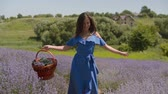 Joyful stunning woman in blue dress holding picnic basket walking through blooming lavender field, expressing joy, happiness and carefree mood while enjoying summer vacations in countryside.