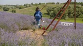 Carefree young mixed race man piggybacking excited stylish woman and running joyfully through blooming lavender field. Cheerful positive multi ethnic couple enjoying freedom and outdoor leisure. Stockvideo