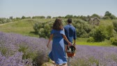 Rear view of relaxed couple taking a walk in blooming lavender field while enjoying summer vacations in countryside. Positive woman with picnic basket and man spending outdoor leisure in nature.