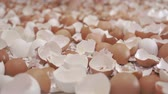 koncepty : Walking Carefully Through Broken Egg Shells