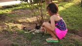 chat : Little Girl Petting Cat extérieur