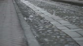 flagstone : Low angle pan and tilt shot of a deserted cobblestone and flagstone road in an historic city district with traffic far off in the background. Stock Footage