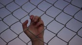 capturados : Closeup evening shot of the hand of an anonymous male person grabbing a chain link metal wire fence from the opposite or other side of the viewer and pulling on it as if the person were struggling. Stock Footage