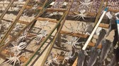fishmarket : dried fish from a seaside vendor in Nazare, Portugal. Stock Footage
