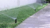 umidade : Garden backyard automatic Irrigation system Spray watering Lawn sector Vídeos