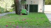 summer : Home Gardening Activity - Electric Lawn backyard mowing