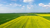 millsime : The rapeseed field against the background of the wind power stations in springtime Stock Footage