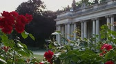 dizi : Roses In Front of Ancient Columns At Sunset Stok Video
