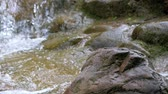 Close-up of A Small Waterfall With Mossy Rocks Archivo de Video