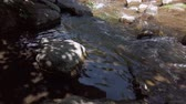 Big Rocks In A Fast Flowing River With Shadows of Trees Archivo de Video
