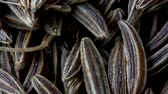cominho : Close-up of Caraway Seeds, Carum carvi, Dark Food Background, Pan Shot