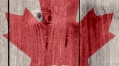 concettuale : Canada Politics News Concept: Canadian Flag Wooden Fence, Zoom Out