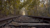 ferrugem : Old Abandoned Railway Tracks In The Forest In Berlin, Germany