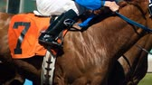 equestre : Seven Horse Rider Jockey Come Across Race Finish Line photo