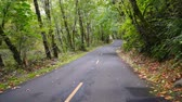 sakin : Paved Road Through Protected Forest Outdoor Landscape Stok Video