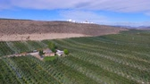 Aerial View of Rich Farmland in the Okanogan Valley below Satellite Dish Filled Hilltop Dostupné videozáznamy